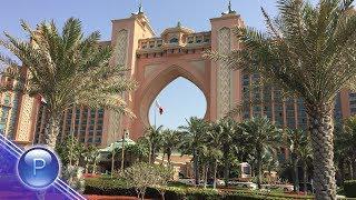 UAE - DJENA - KOYA / ОАЕ - Джена - Коя, 2018